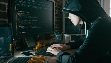 Photo of تربیت نسل آینده رهبران امنیت سایبری