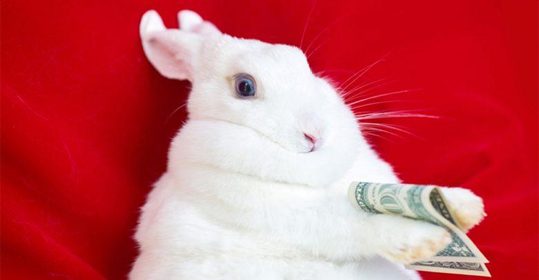 دستگاههای لینوکس و IoT هدف حملات دو بدافزار استخراج ارز دیجیتال 000Linux Rabbit Rabbot Malware  1000 523 780x405
