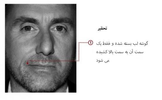 مهندسی اجتماعی بر اساس جزییات حرکات چهره در حالت تحقیر