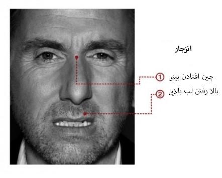 مهندسی اجتماعی بر اساس جزییات حرکات چهره در حالت انزجار