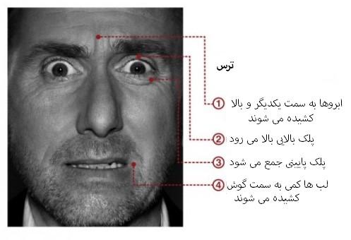 مهندسی اجتماعی بر اساس جزییات حرکات چهره در حالت ترس