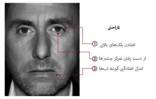 مهندسی اجتماعی بر اساس جزییات حرکات چهره در حالت ناراحتی